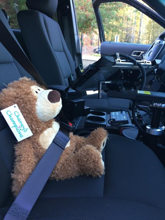 Chaney Bear in Car